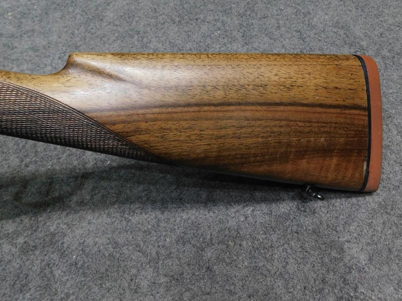 Zanoletti Slug